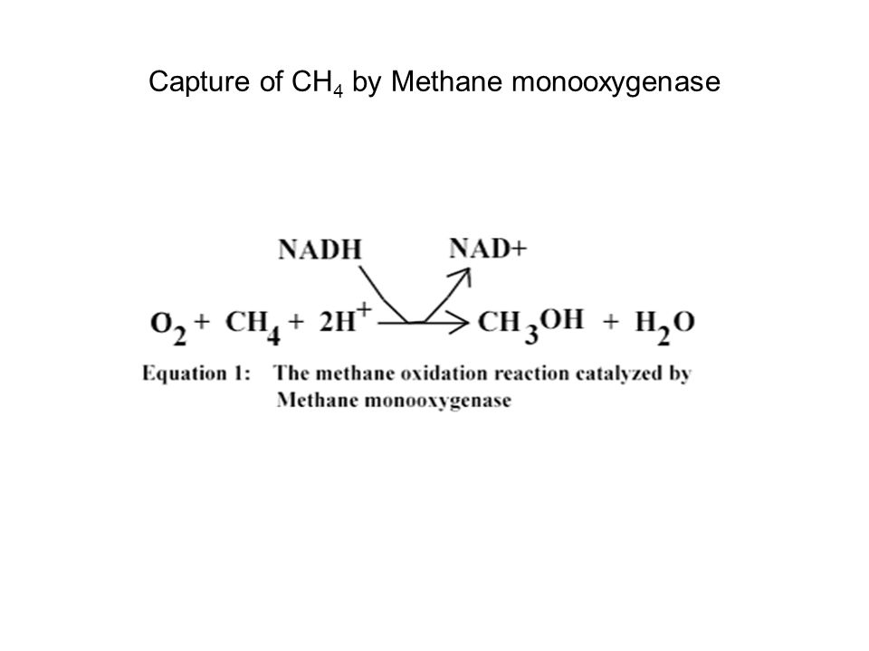 Capture of CH 4 by Methane monooxygenase