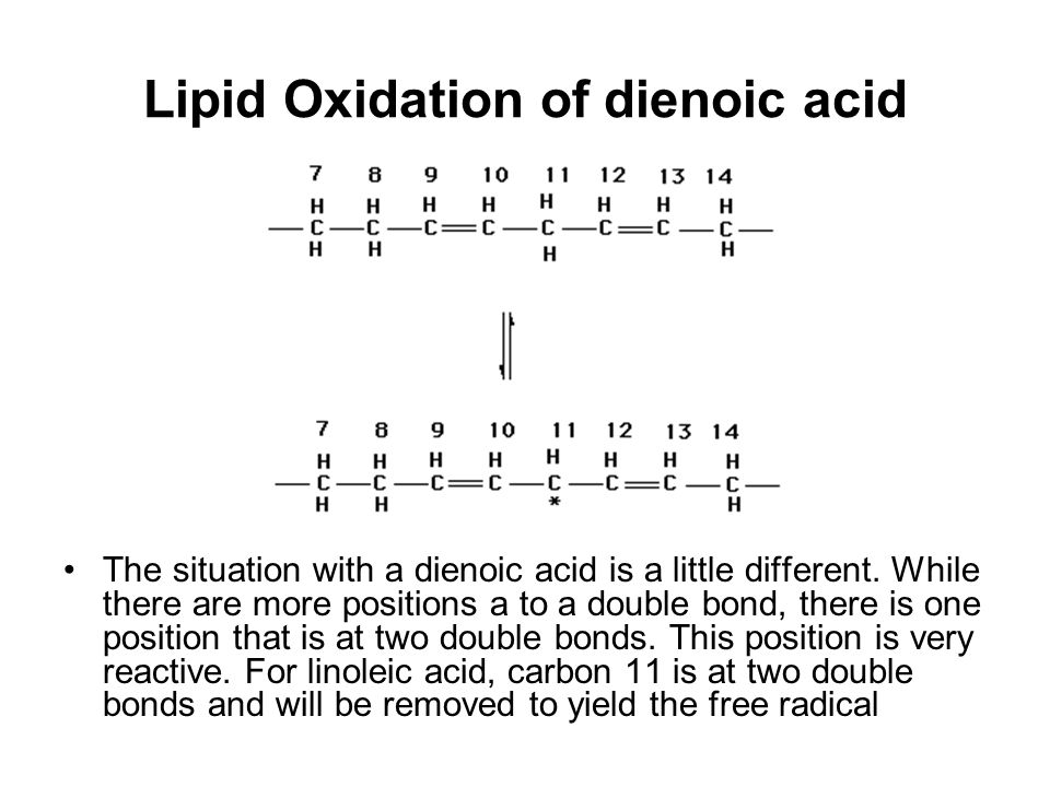 Lipid Oxidation of dienoic acid The situation with a dienoic acid is a little different. While there are more positions a to a double bond, there is o