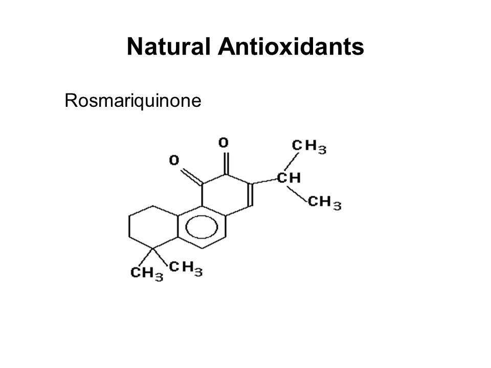 Natural Antioxidants Rosmariquinone