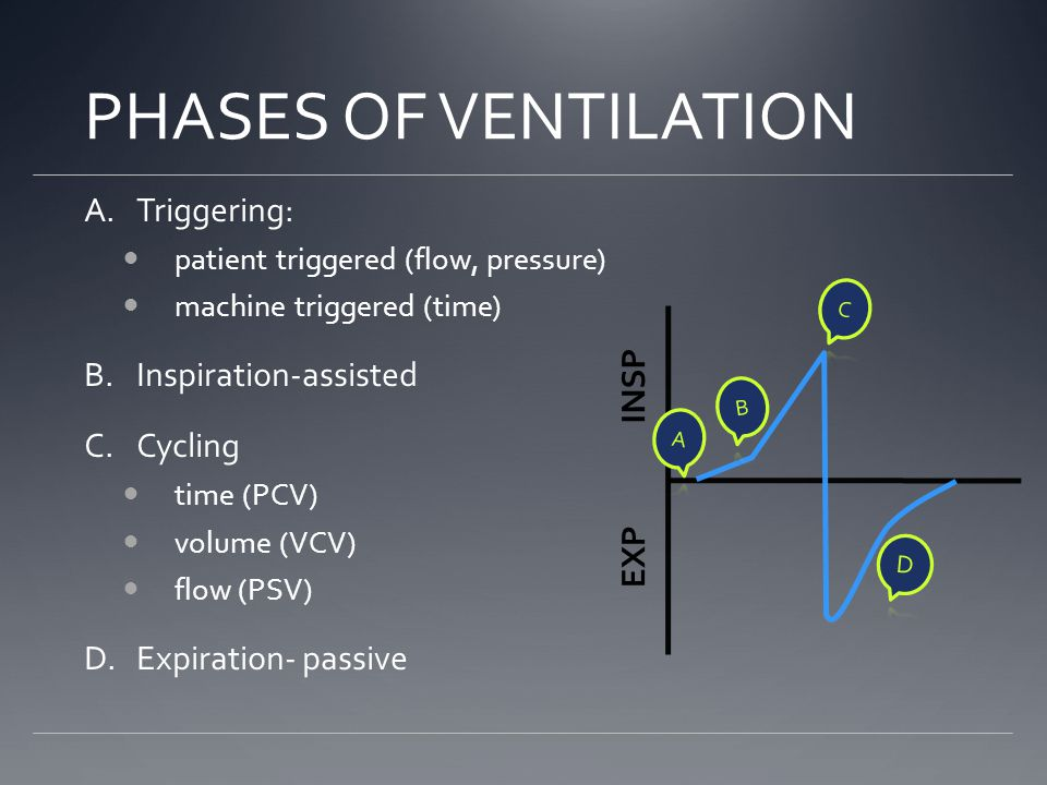PHASES OF VENTILATION A.Triggering: patient triggered (flow, pressure) machine triggered (time) B.Inspiration-assisted C.Cycling time (PCV) volume (VCV) flow (PSV) D.Expiration- passive INSP EXP