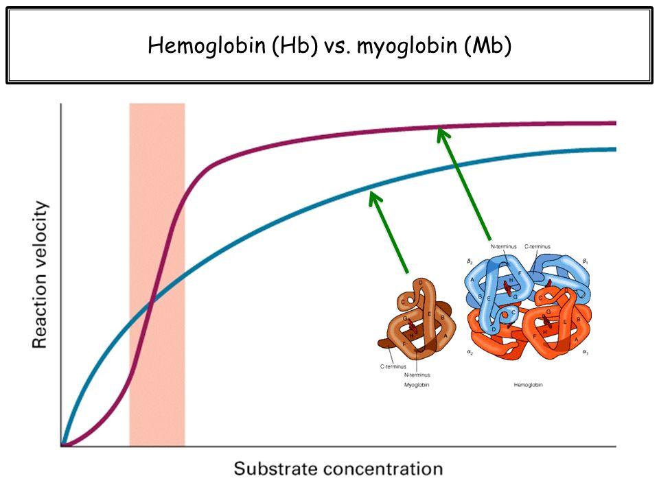 Hemoglobin (Hb) vs. myoglobin (Mb)