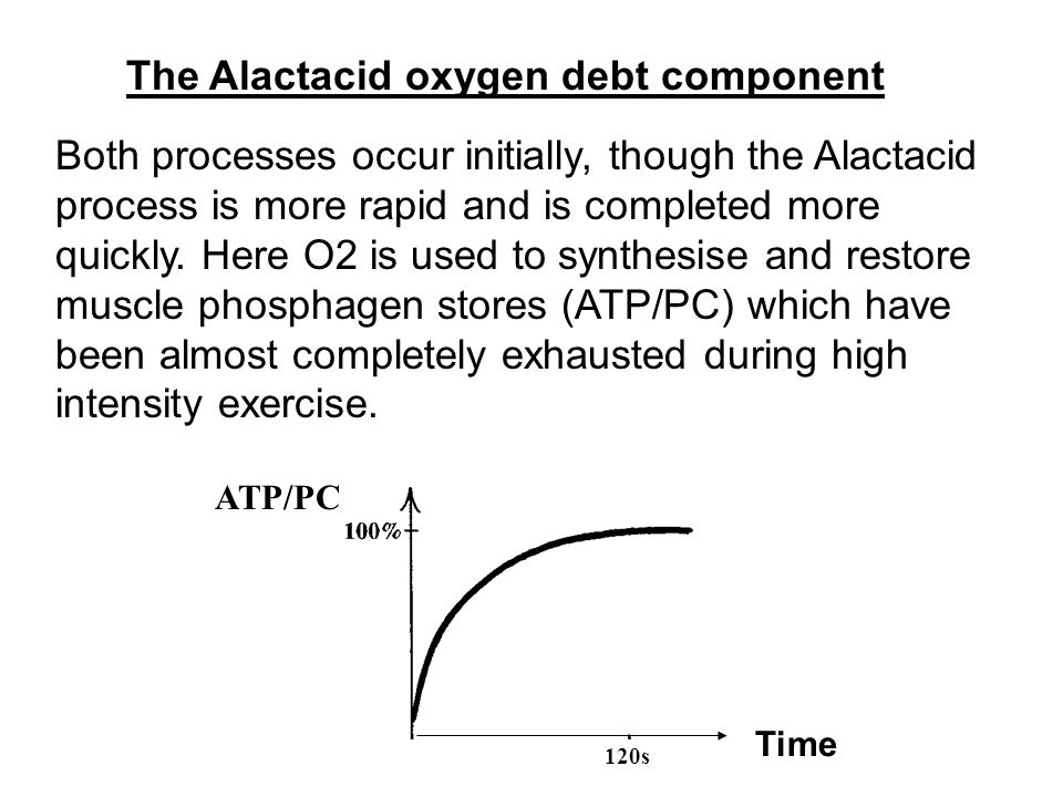 The phosphagen restoration is achieved by three mechanisms: 1.The aerobic conversion of carbohydrates into CO2 and water which is used to manufacture ATP from ADP andPi.