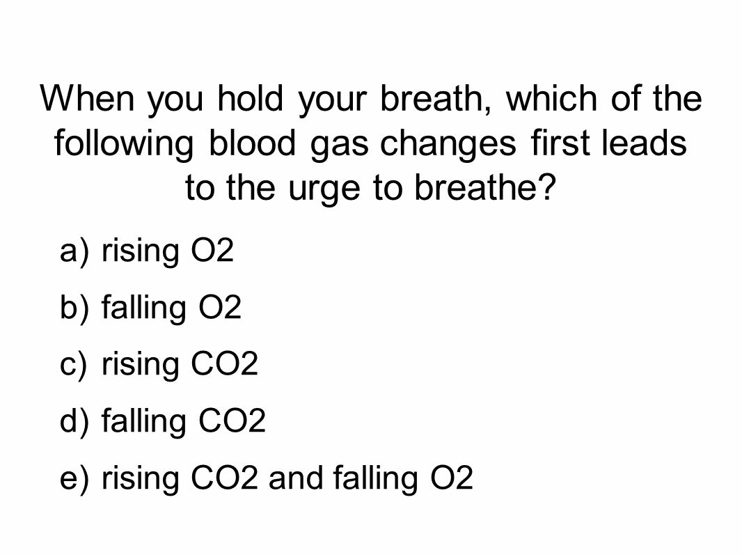 When you hold your breath, which of the following blood gas changes first leads to the urge to breathe.