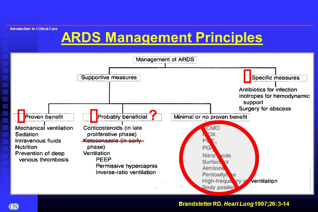 Introduction to Critical Care ARDS Management Principles Brandstetter RD.