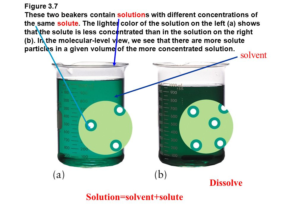 Figure 3.7 These two beakers contain solutions with different concentrations of the same solute.