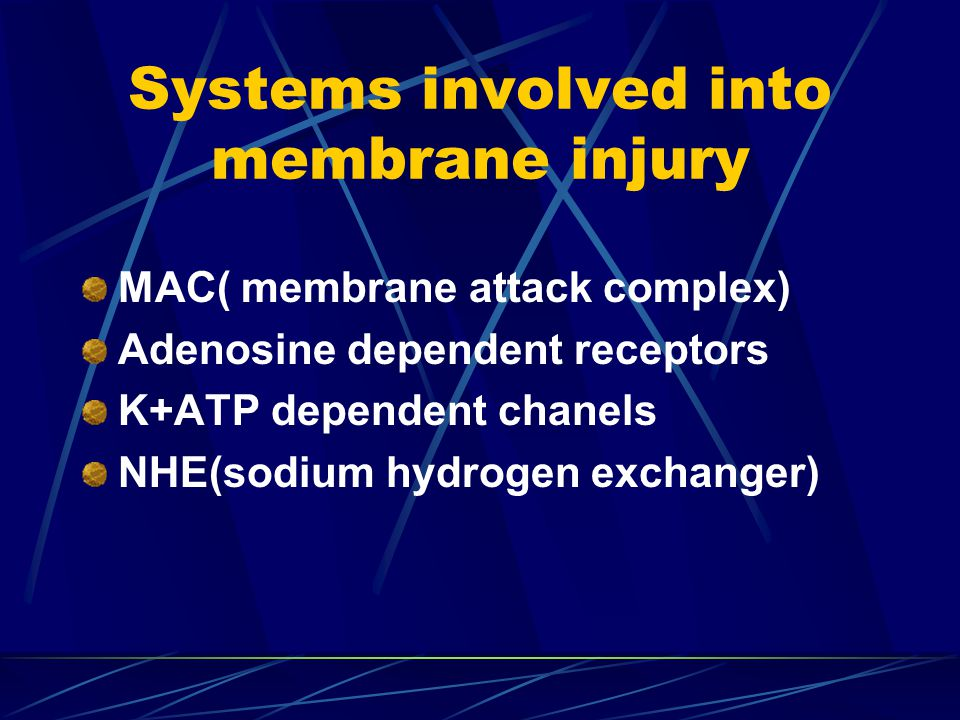 Systems involved into membrane injury MAC( membrane attack complex) Adenosine dependent receptors K+ATP dependent chanels NHE(sodium hydrogen exchange
