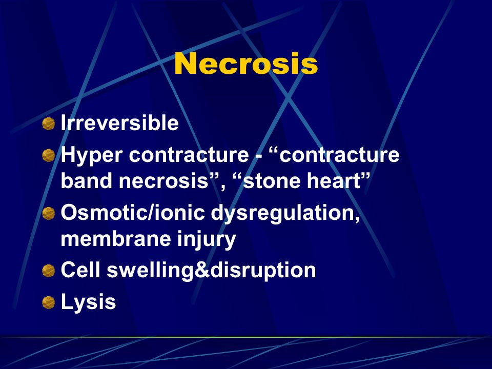 "Necrosis Irreversible Hyper contracture - ""contracture band necrosis"", ""stone heart"" Osmotic/ionic dysregulation, membrane injury Cell swelling&disrup"