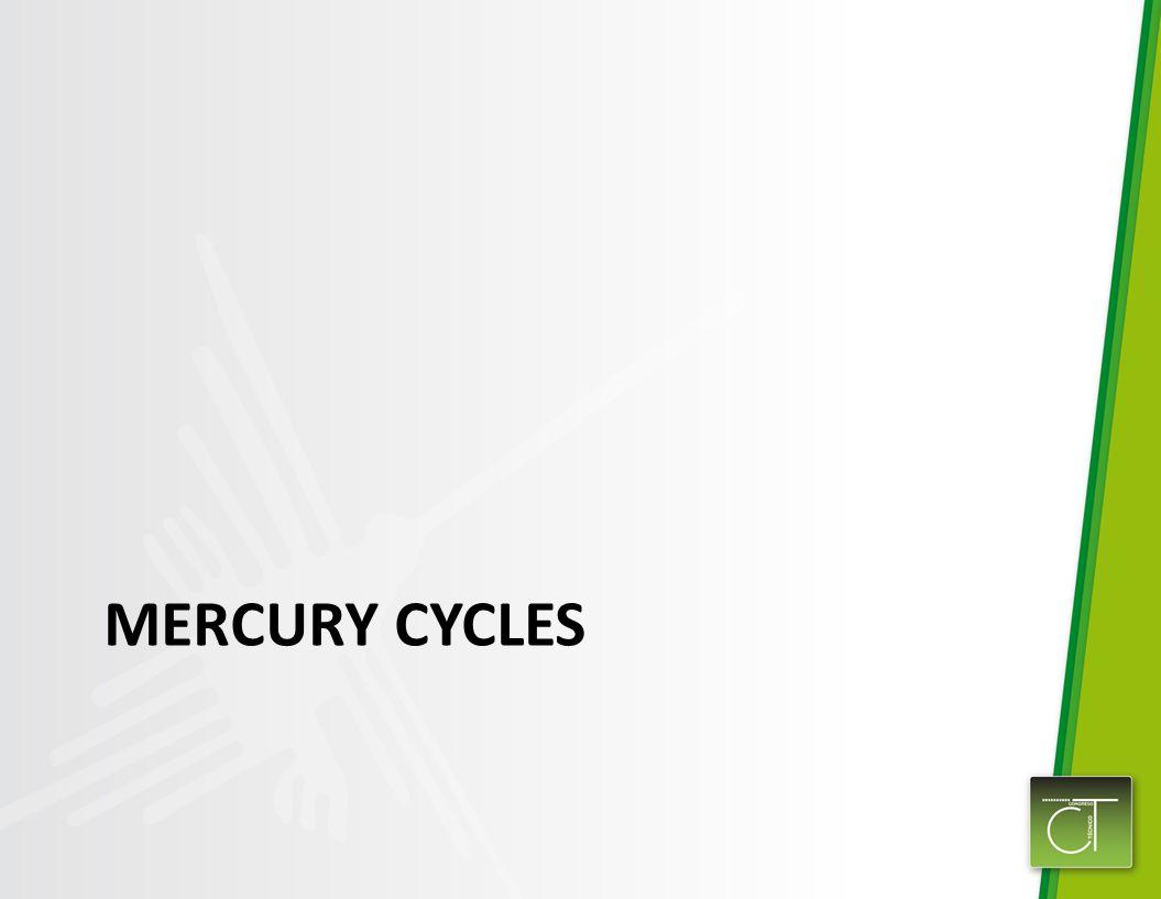 MERCURY CYCLES