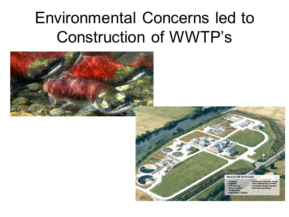 What is 'Decentralised' Wastewater Management? Treat locally Discharge to ground / Re-use water