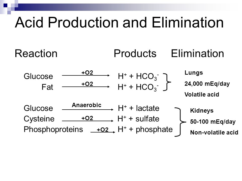 Acid Production and Elimination Reaction Products Elimination Glucose H + + HCO 3 - Fat H + + HCO 3 - Glucose H + + lactate Cysteine H + + sulfate Phosphoproteins H + + phosphate Anaerobic +O2 Lungs 24,000 mEq/day Volatile acid Kidneys 50-100 mEq/day Non-volatile acid