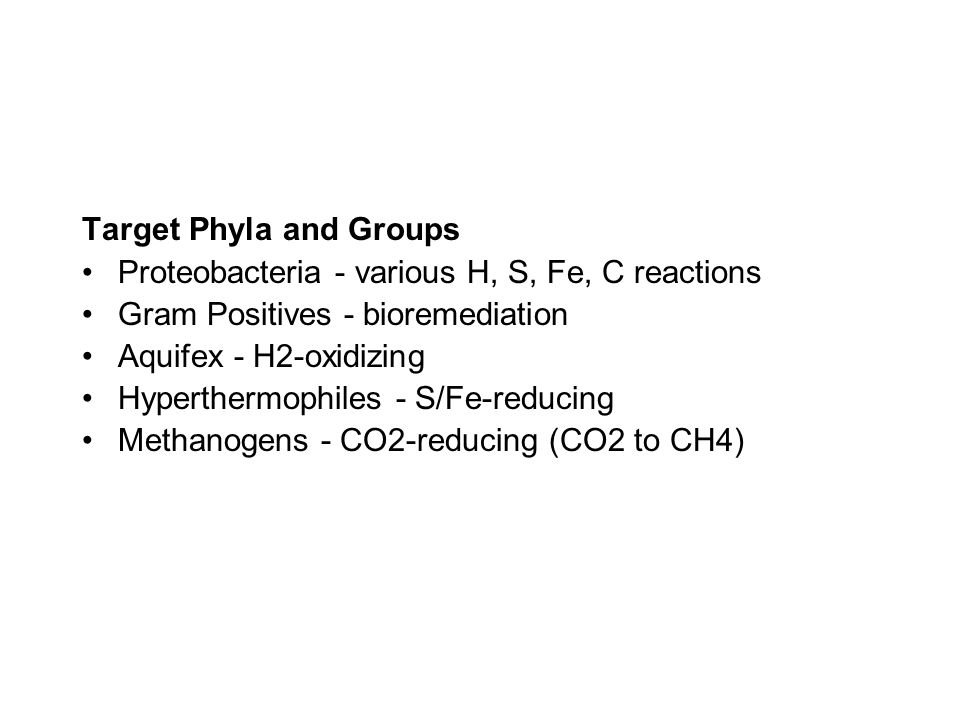 Target Phyla and Groups Proteobacteria - various H, S, Fe, C reactions Gram Positives - bioremediation Aquifex - H2-oxidizing Hyperthermophiles - S/Fe-reducing Methanogens - CO2-reducing (CO2 to CH4)