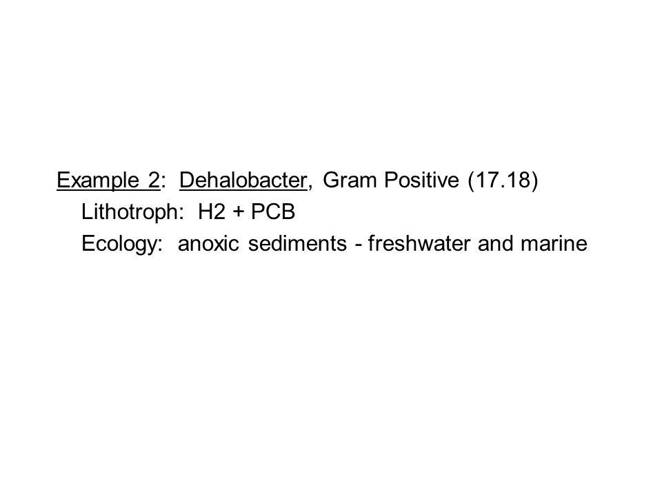 Example 2: Dehalobacter, Gram Positive (17.18) Lithotroph: H2 + PCB Ecology: anoxic sediments - freshwater and marine
