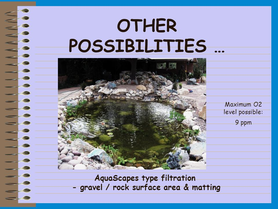 OTHER POSSIBILITIES … Maximum O2 level possible: 9 ppm AquaScapes type filtration - gravel / rock surface area & matting