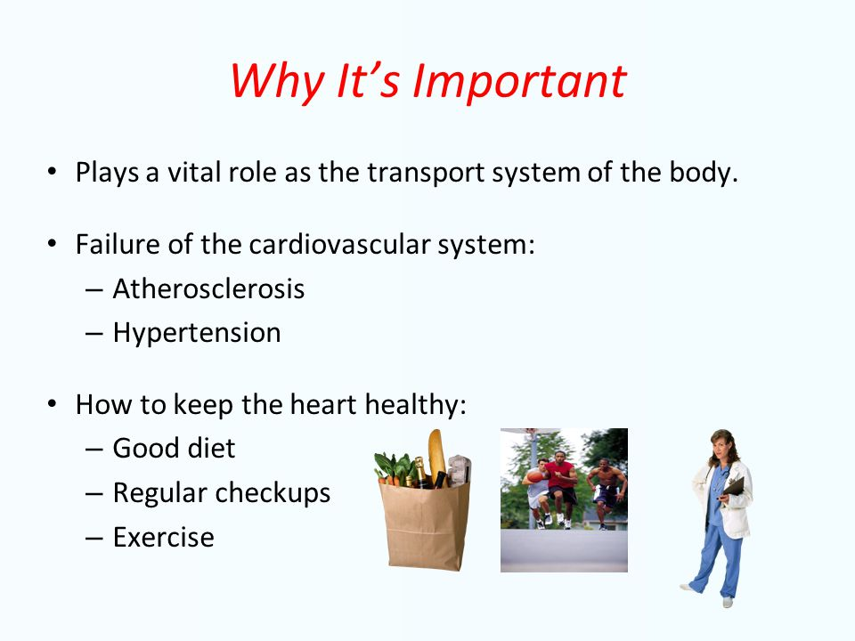 Why It's Important Plays a vital role as the transport system of the body.