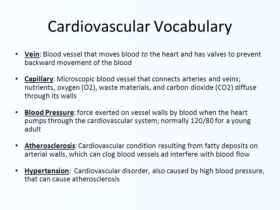 Cardiovascular Vocabulary Vein: Blood vessel that moves blood to the heart and has valves to prevent backward movement of the blood Capillary: Microsc