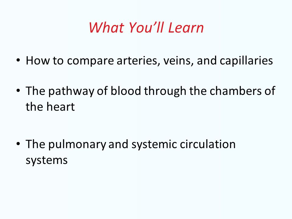 What You'll Learn How to compare arteries, veins, and capillaries The pathway of blood through the chambers of the heart The pulmonary and systemic circulation systems