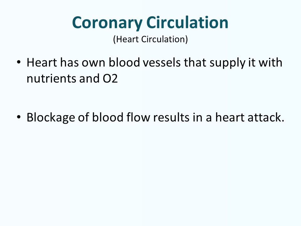 Coronary Circulation (Heart Circulation) Heart has own blood vessels that supply it with nutrients and O2 Blockage of blood flow results in a heart attack.