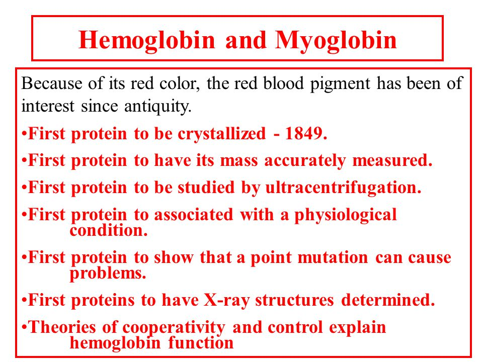 The structure of myoglobin and hemoglobin Andrew Kendrew and Max Perutz solved the structure of these molecules in 1959 to 1968.