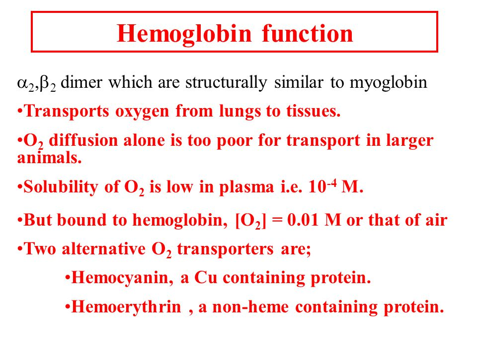 Hemoglobin function  2,  2 dimer which are structurally similar to myoglobin Transports oxygen from lungs to tissues.