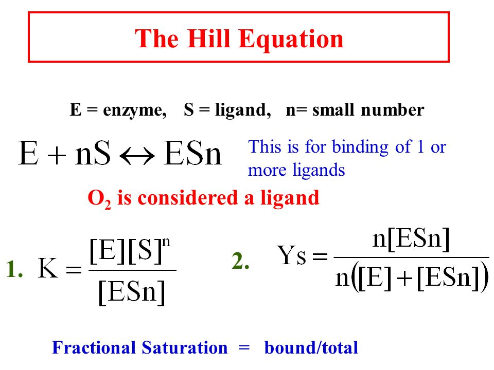 The Hill Equation E = enzyme, S = ligand, n= small number This is for binding of 1 or more ligands O 2 is considered a ligand 1.