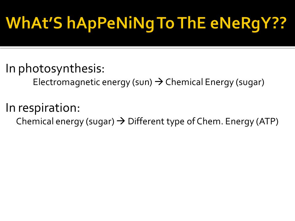 In photosynthesis: Electromagnetic energy (sun)  Chemical Energy (sugar) In respiration: Chemical energy (sugar)  Different type of Chem. Energy (AT