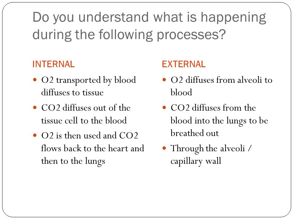 Do you understand what is happening during the following processes.