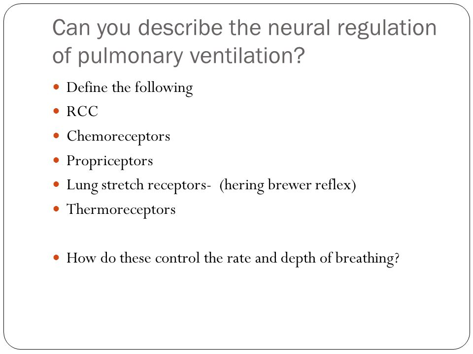 Can you describe the neural regulation of pulmonary ventilation.