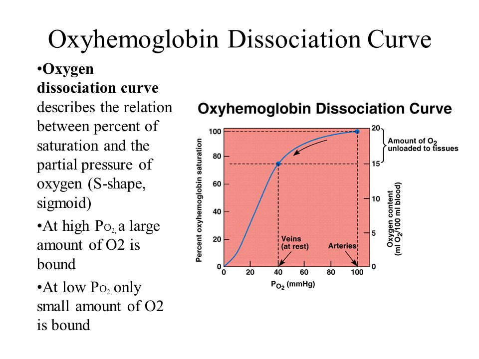 Oxygen dissociation curve describes the relation between percent of saturation and the partial pressure of oxygen (S-shape, sigmoid) At high P O 2, a