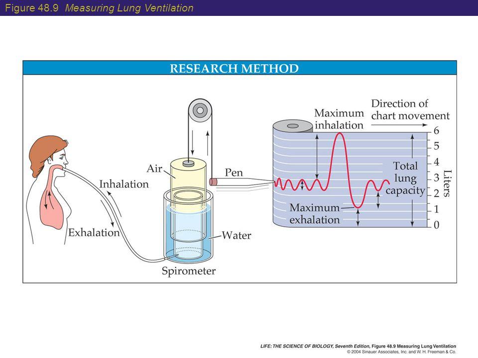 Figure 48.9 Measuring Lung Ventilation