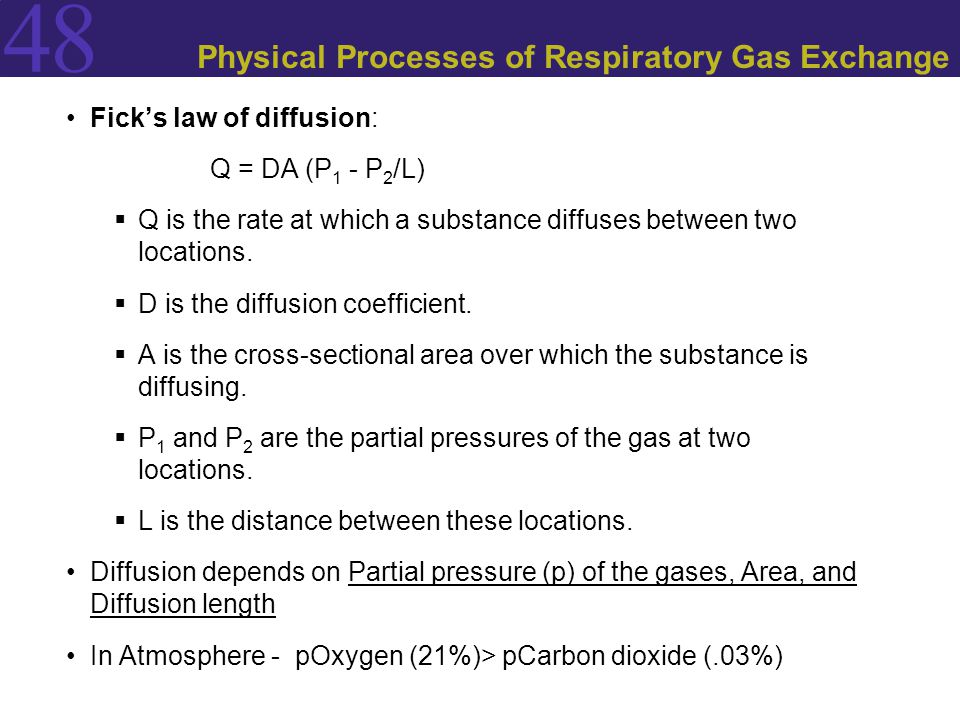 48 Physical Processes of Respiratory Gas Exchange Fick's law of diffusion: Q = DA (P 1 - P 2 /L)  Q is the rate at which a substance diffuses between
