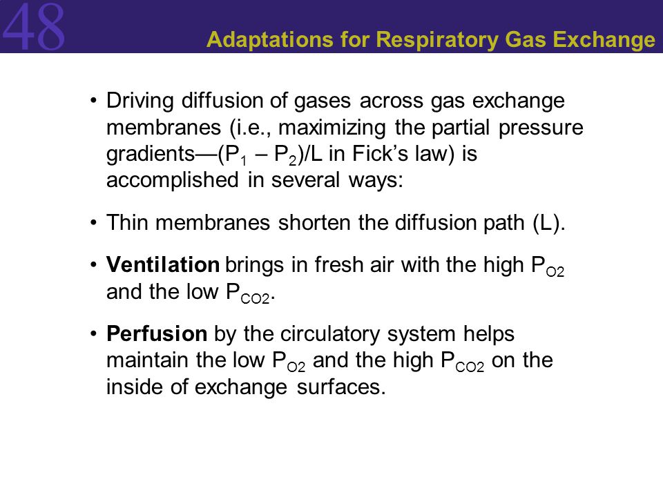 48 Adaptations for Respiratory Gas Exchange Driving diffusion of gases across gas exchange membranes (i.e., maximizing the partial pressure gradients—