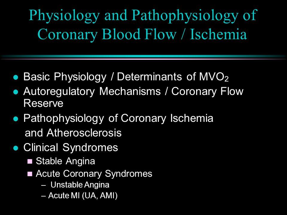 Physiology and Pathophysiology of Coronary Blood Flow / Ischemia l Basic Physiology / Determinants of MVO 2 l Autoregulatory Mechanisms / Coronary Flow Reserve l Pathophysiology of Coronary Ischemia and Atherosclerosis l Clinical Syndromes n Stable Angina n Acute Coronary Syndromes – Unstable Angina –Acute MI (UA, AMI)
