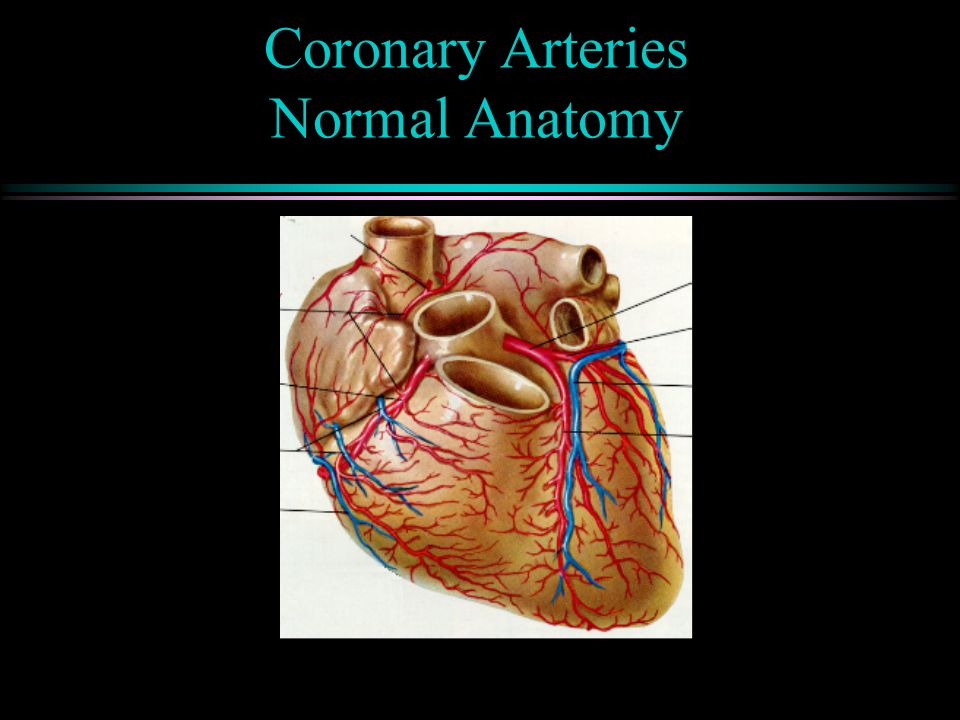 Myocardial Oxygen Supply Determined by: Coronary Blood Flow & O 2 Carrying Capacity  Oxygen saturation of the blood  Hemoglobin content of the blood ( Flow = Pressure / Resistance)  Coronary perfusion pressure  Coronary vascular resistance