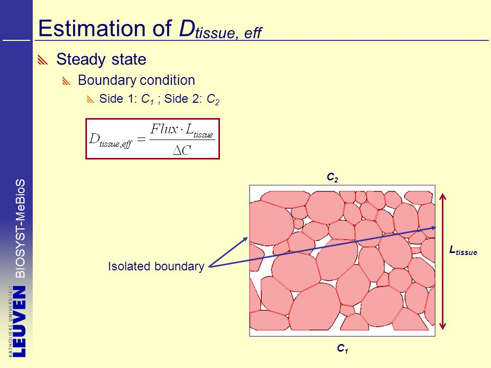 BIOSYST-MeBioS Estimation of D tissue, eff Steady state Boundary condition Side 1: C 1 ; Side 2: C 2 C2C2 C1C1 L tissue Isolated boundary