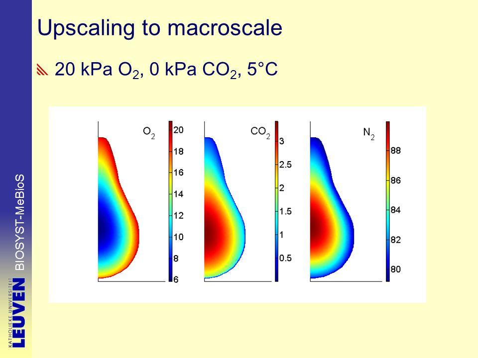 BIOSYST-MeBioS Upscaling to macroscale 20 kPa O 2, 0 kPa CO 2, 5°C