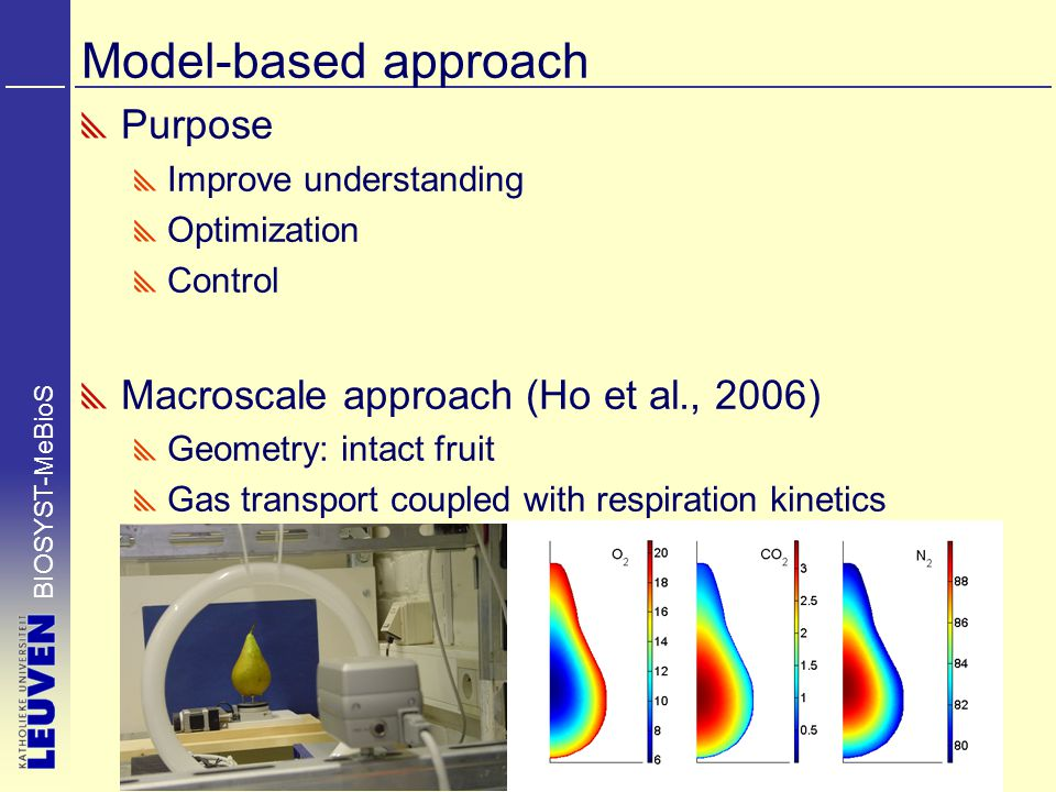 Model-based approach Purpose Improve understanding Optimization Control Macroscale approach (Ho et al., 2006) Geometry: intact fruit Gas transport coupled with respiration kinetics