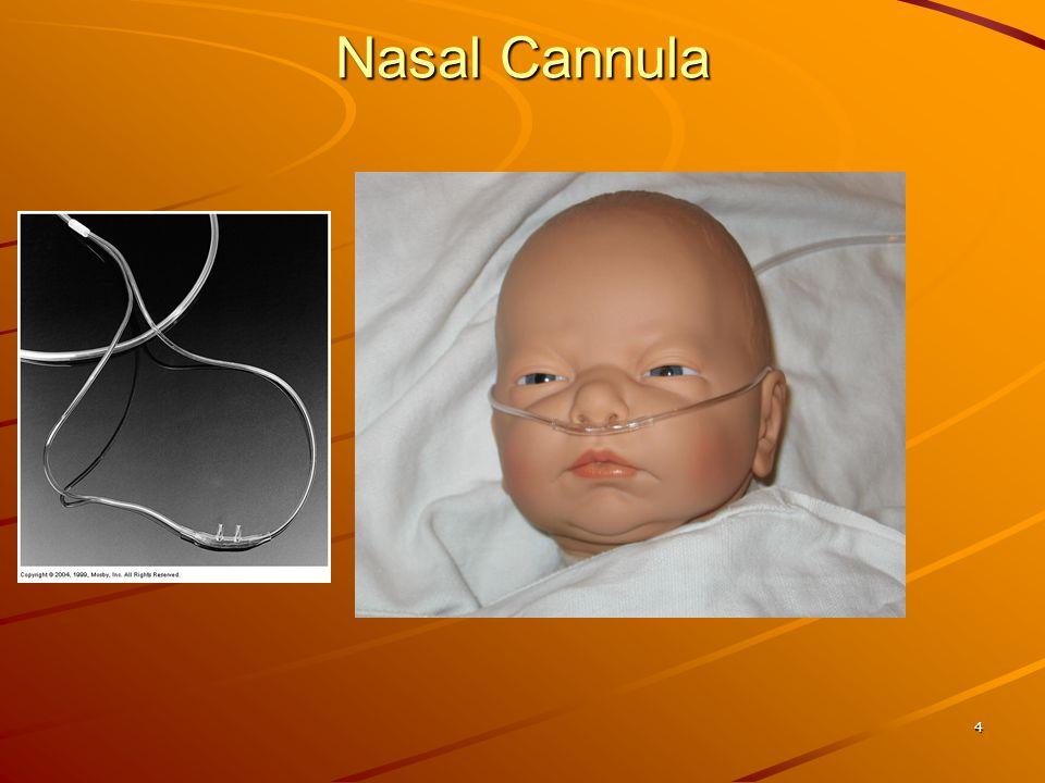 4 Nasal Cannula