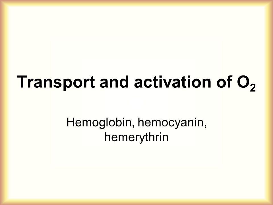 Transport and activation of O 2 Hemoglobin, hemocyanin, hemerythrin