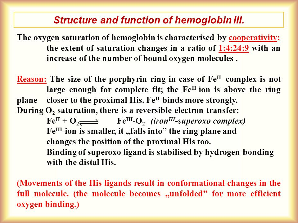 Structure and function of hemoglobin III. The oxygen saturation of hemoglobin is characterised by cooperativity: the extent of saturation changes in a