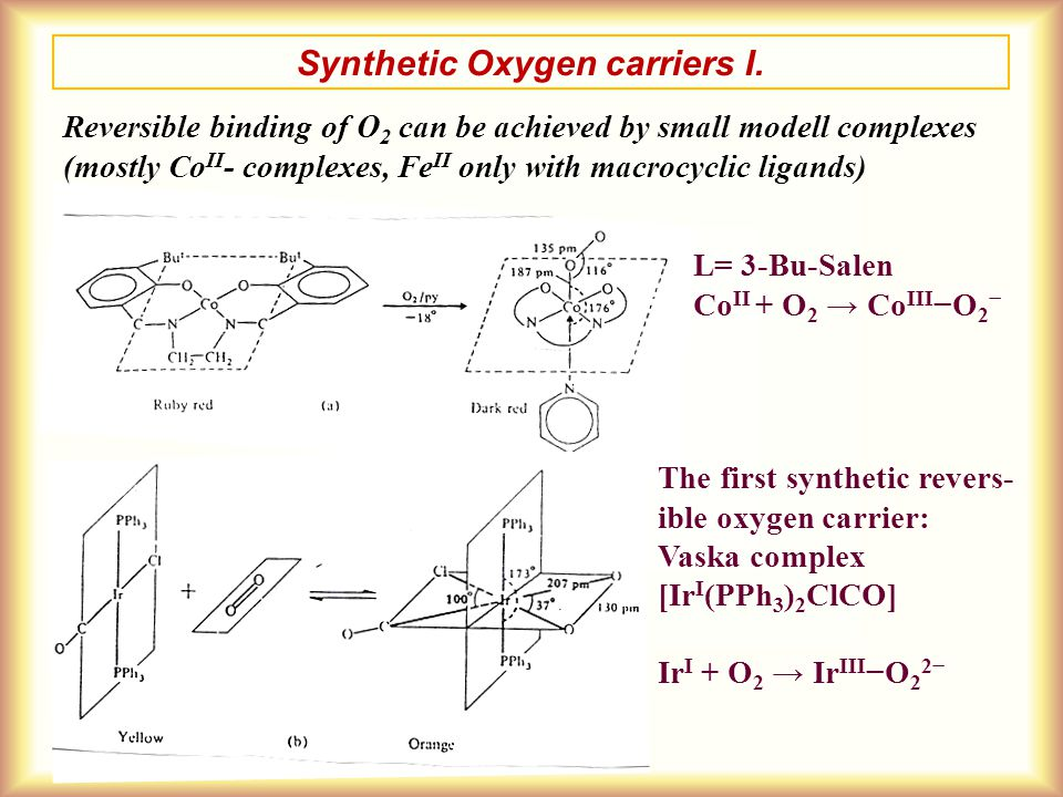 Synthetic Oxygen carriers I. Reversible binding of O 2 can be achieved by small modell complexes (mostly Co II - complexes, Fe II only with macrocycli