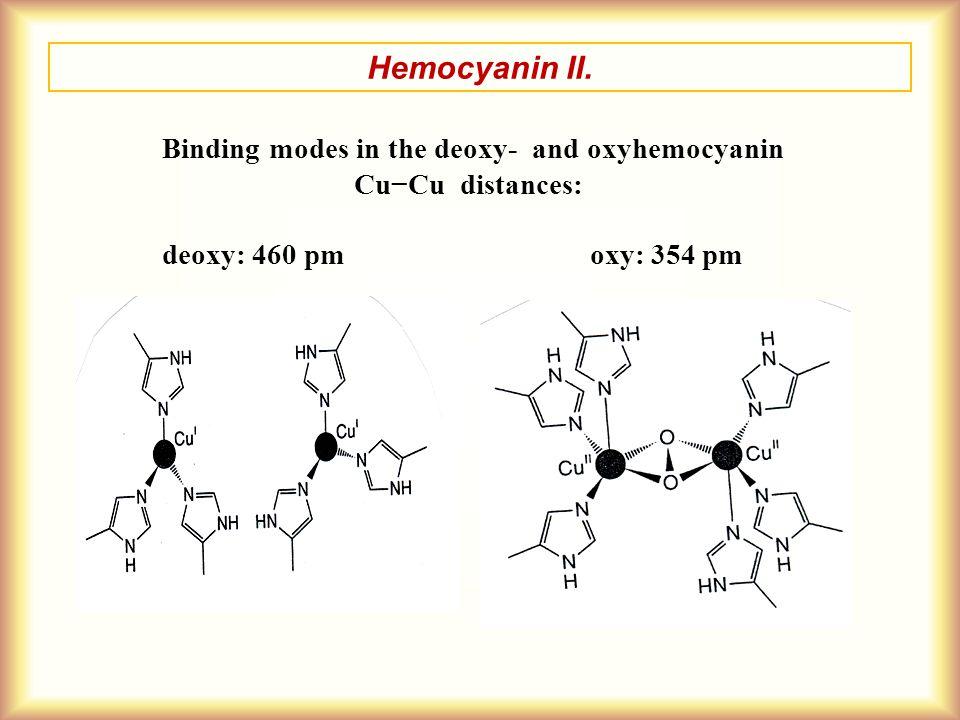 Hemocyanin II. Binding modes in the deoxy- and oxyhemocyanin Cu−Cu distances: deoxy: 460 pm oxy: 354 pm