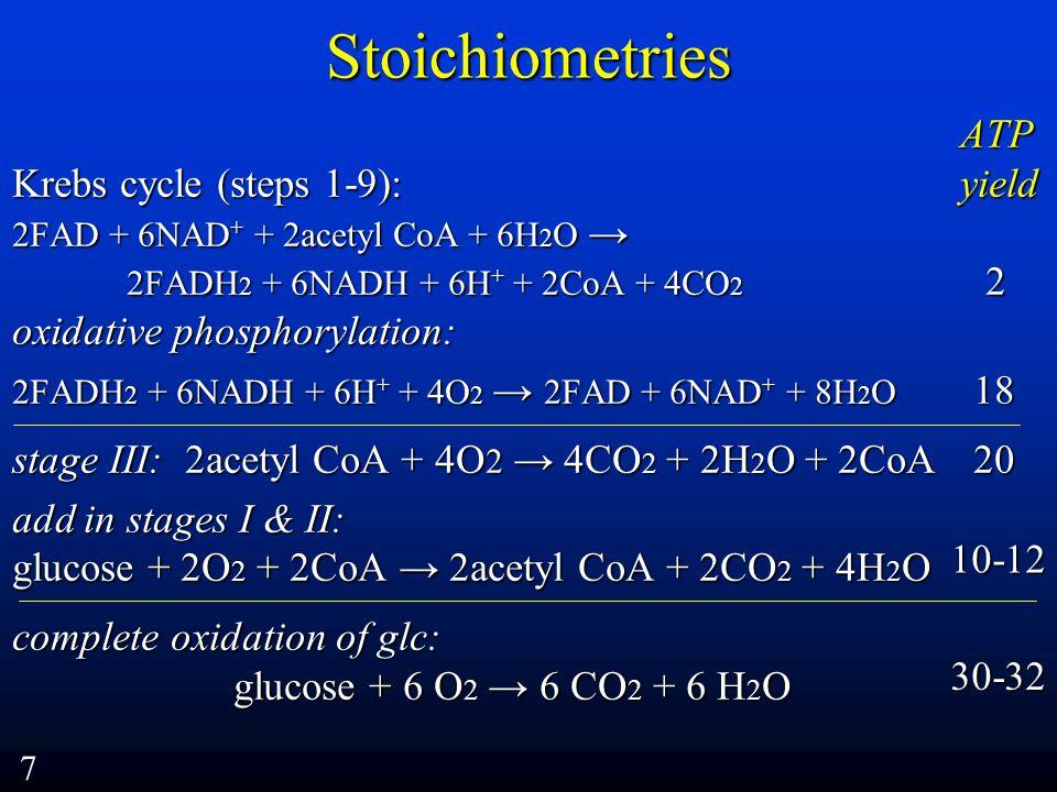 Stoichiometries ATP ATP Krebs cycle (steps 1-9): yield 2FAD + 6NAD + + 2acetyl CoA + 6H 2 O → 2FADH 2 + 6NADH + 6H + + 2CoA + 4CO 2 2 oxidative phosphorylation: 2FADH 2 + 6NADH + 6H + + 4O 2 → 2FAD + 6NAD + + 8H 2 O 18 stage III: 2acetyl CoA + 4O 2 → 4CO 2 + 2H 2 O + 2CoA 20 add in stages I & II: glucose + 2O 2 + 2CoA → 2acetyl CoA + 2CO 2 + 4H 2 O complete oxidation of glc: glucose + 6 O 2 → 6 CO 2 + 6 H 2 O glucose + 6 O 2 → 6 CO 2 + 6 H 2 O 7 30-32 10-12