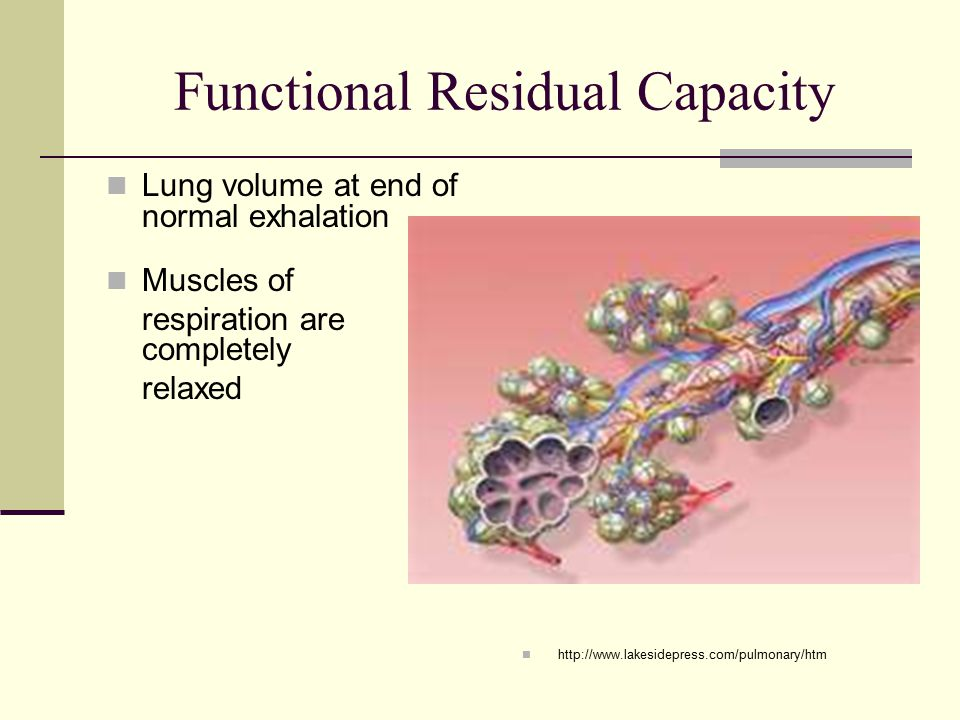 Functional Residual Capacity Lung volume at end of normal exhalation Muscles of respiration are completely relaxed http://www.lakesidepress.com/pulmonary/htm