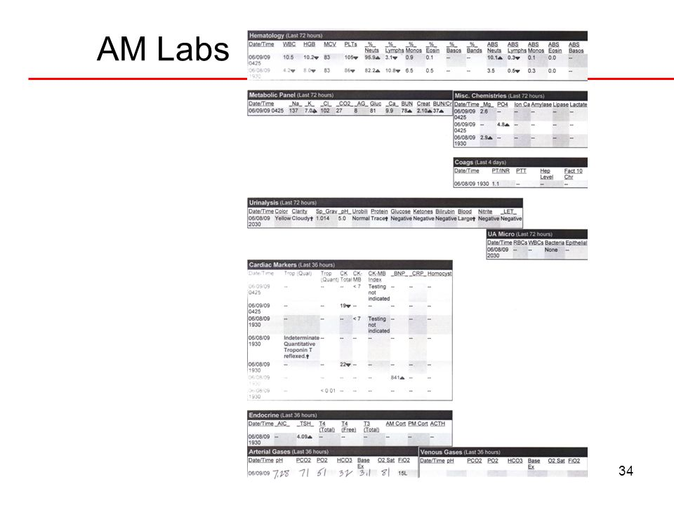 34 AM Labs