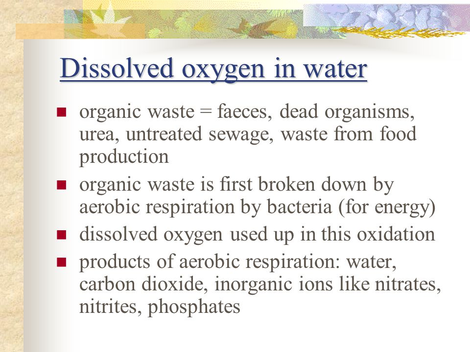 Dissolved oxygen in water organic waste = faeces, dead organisms, urea, untreated sewage, waste from food production organic waste is first broken down by aerobic respiration by bacteria (for energy) dissolved oxygen used up in this oxidation products of aerobic respiration: water, carbon dioxide, inorganic ions like nitrates, nitrites, phosphates