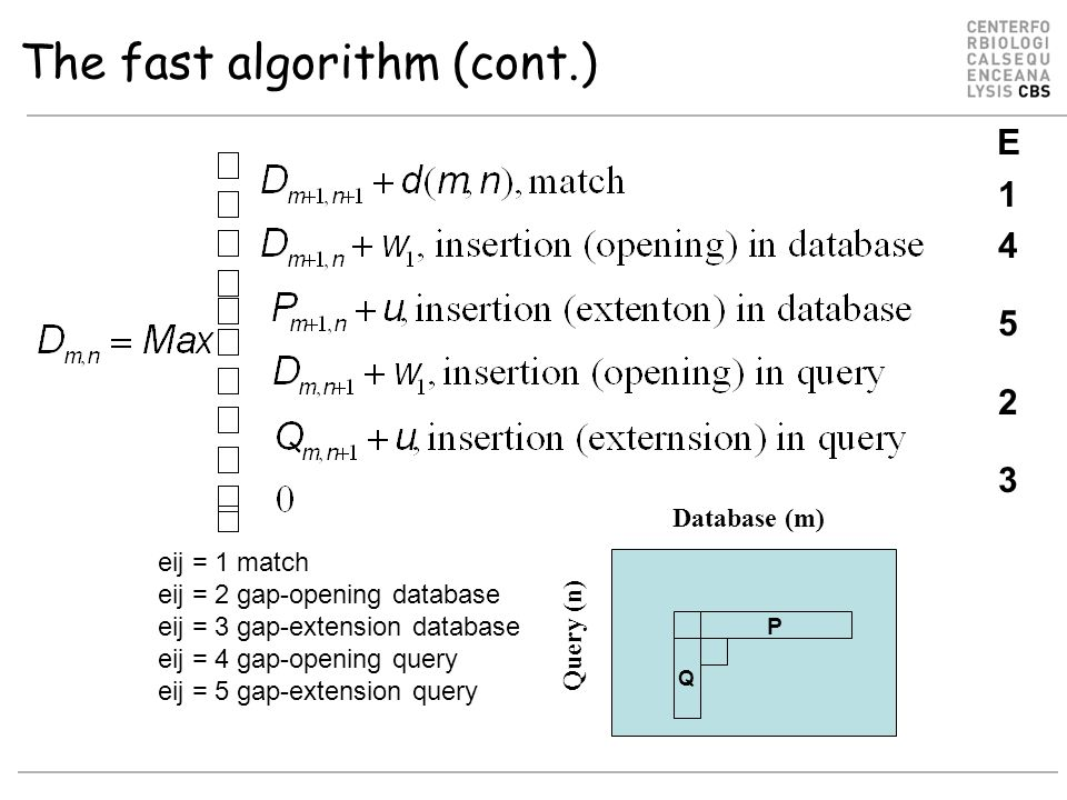 The fast algorithm (cont.) Database (m) Query (n) P Q eij = 1 match eij = 2 gap-opening database eij = 3 gap-extension database eij = 4 gap-opening query eij = 5 gap-extension query E14523E14523