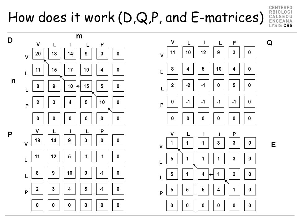 How does it work (D,Q,P, and E-matrices) D Q P m n E 11 V L I L P V L L P 101293 845104 2-205 0 0 0 0 0 000000 1 V LI L P V L L P 1133 51113 51412 55541 0 0 0 0 000000 18 V LI L P V L L P 14930 11125 89100 2345 0 0 0 0 000000 20 V LI L P V L L P 181493 111517104 89 155 234510 0 0 0 0 000000