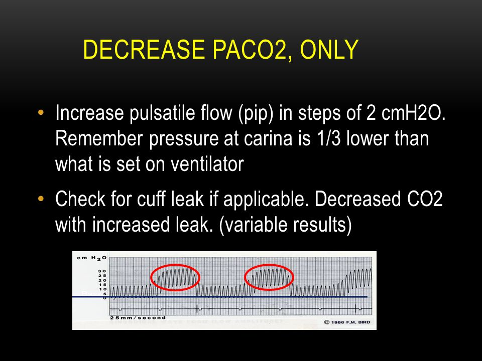 DECREASE PACO2, ONLY Increase pulsatile flow (pip) in steps of 2 cmH2O. Remember pressure at carina is 1/3 lower than what is set on ventilator Check