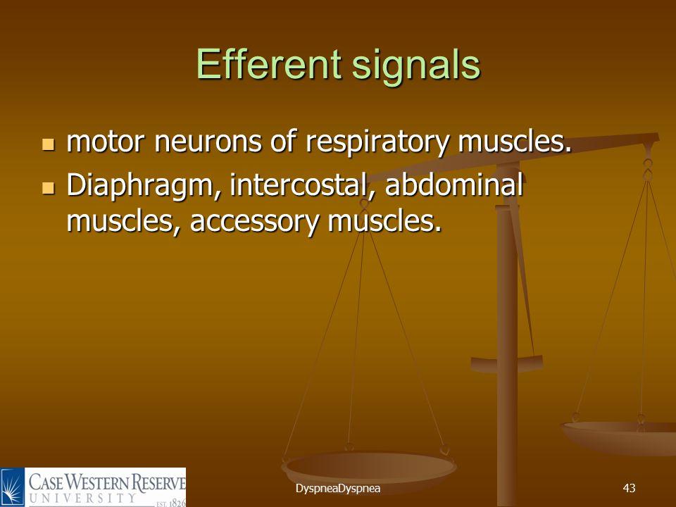 DyspneaDyspnea43 Efferent signals motor neurons of respiratory muscles.