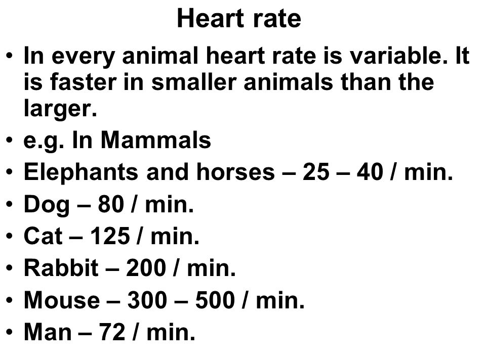 Heart rate In every animal heart rate is variable.
